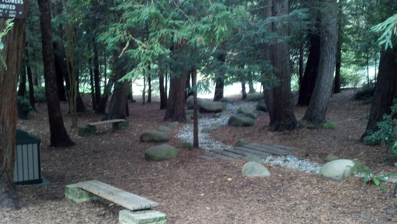 A redwood forest glen at this memorial.