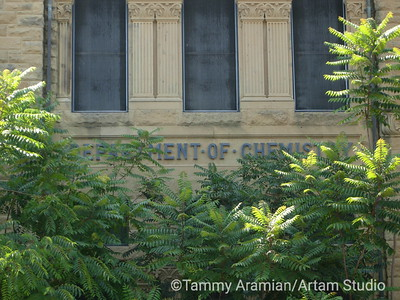 """Old Chem"" building, closed since 1989, August 2006"