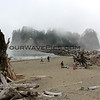 2017-09-15_1515_Olympic NP_La Push_Washington.JPG<br /> <br /> We were excited to see La Push, WA but encountered a pea-soup fog.  This is where the 'Twilight'  books and movie series were set.