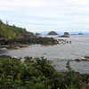 2017-09-22_1835_Wild Pacific Trail_Ucluelet_Vancouver Island.JPG