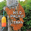 2017-09-22_1833A_Wild Pacific Trail_Ucluelet_Vancouver Island.JPG