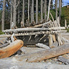 2017-09-15_1510_Olympic NP_Ruby Beach_Washington.JPG<br /> <br /> Huts made from the many huge logs that are scattered all over the beaches in Washington