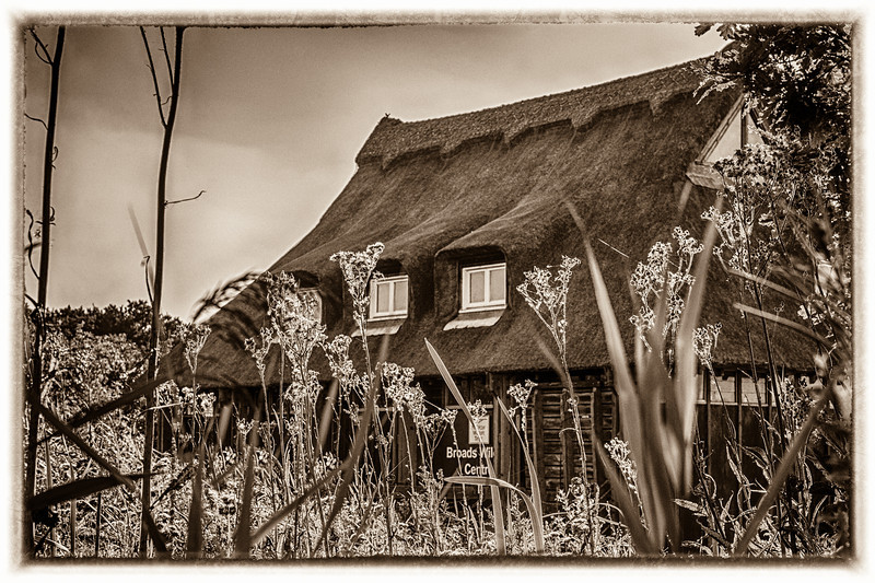 Ranworth Conservation Centre, Norfolk, England