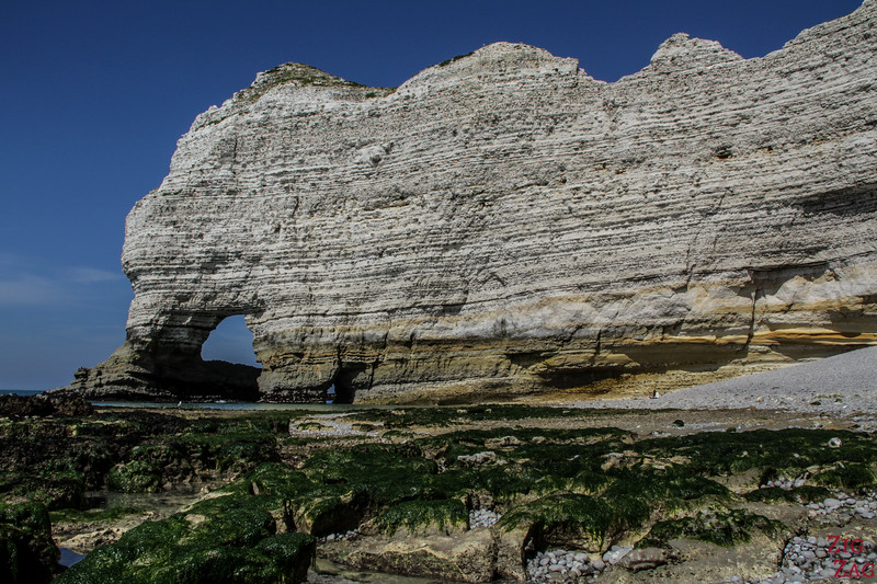 visit the Alabaster coast in Normandy - cliffs