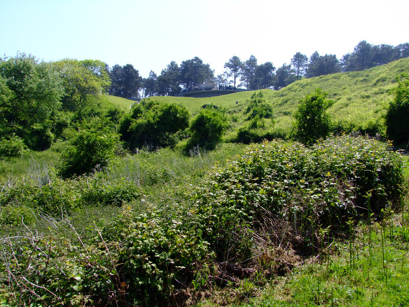 This a view up the hill from Omaha Beach.  The Allies had to fight their way to the top with many killed.