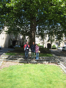 At Bayeux Cathedral.  Colin, Terry and Pauline under a plane tree that was planted in 1761.