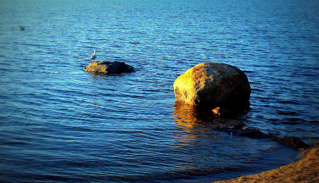 Evening on Gunflint Lake