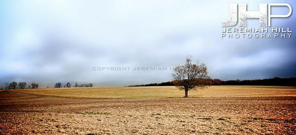 """Tilled Earth #2"", Craighurst, ON, Canada, 2012 Print JP12-412-031V3"
