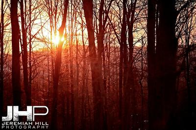 """Morning Sunburst Through The Trees"", Hillsdale, ON, Canada, 2011 Print JP11-1210-055"
