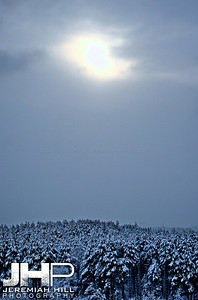 """""""Forest Sky"""", Hillsdale, ON, Canada, 2011 Print JP11-1231-041"""