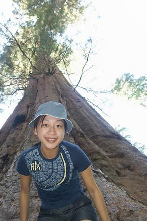 2004-09-06 Yosemite