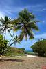 Bahia Honda State Park, on the way to key west