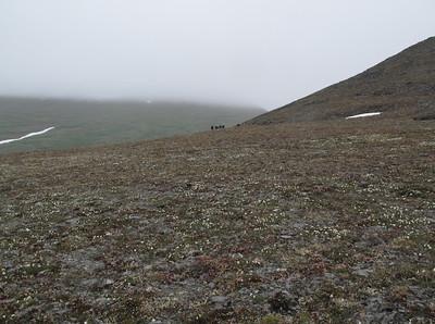 Group on Tundra Nome, AK photo by: Julie O'Neil