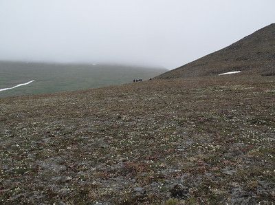 Group on Tundra Nome, AK photo by: Julie O'Neil