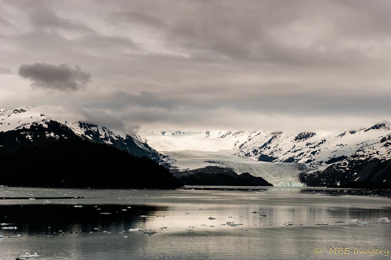 Harvard Glacier in College Fjord