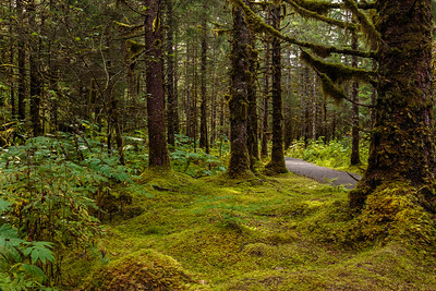 Trail of Time, Mendenhall Glacier, Juneau, Alaska, 2017