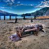 beach motor