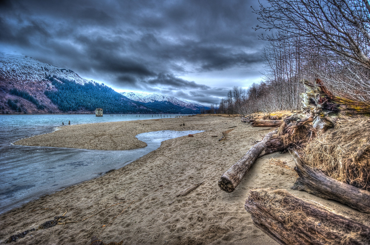 beach log 2