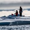 Sea Ice Landing