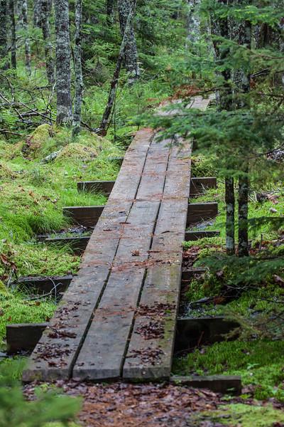 Snake Lake Trail