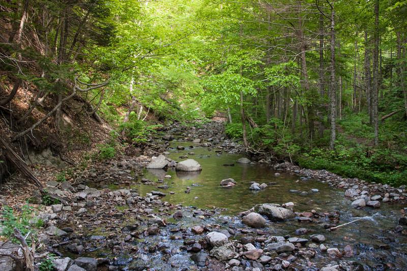 Mactinosh Brook Trail