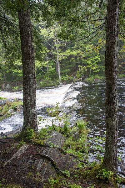 Mill Falls Trail