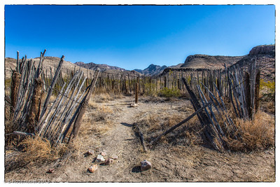 Homer Wilson Ranch, Big Bend, Texas, 2013