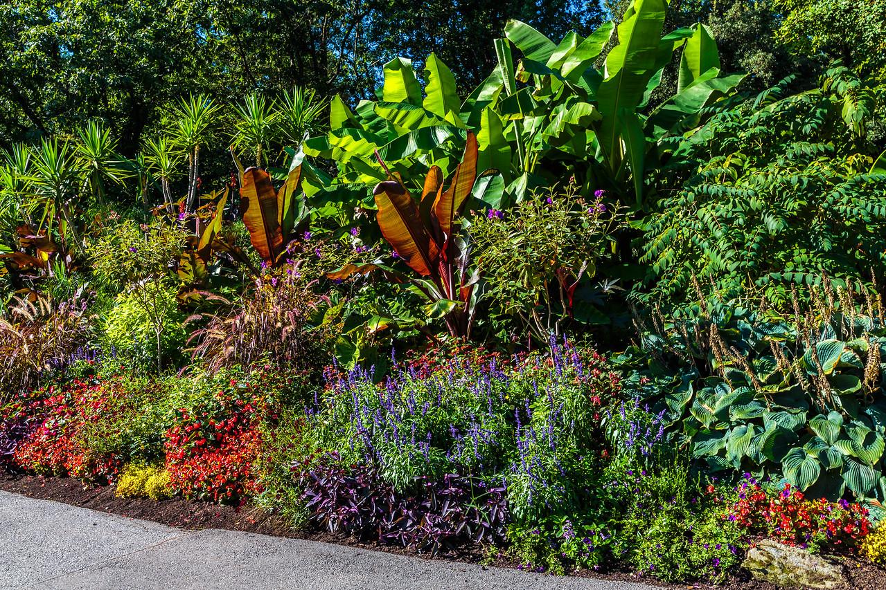 Van Dusen Botanical Garden, Vancouver, British Columbia, 2017