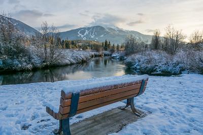 Meadow Park bench views