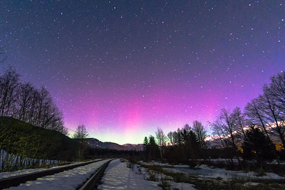 Northern lights over Rainbow Park, Whistler, British Columbia