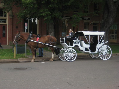 horse_carriage