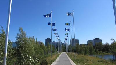 NWT_flags