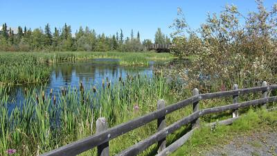 niven_lake_trail_12