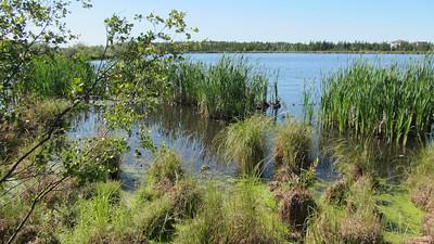 niven_lake_trail_03