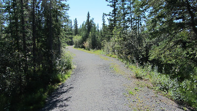 niven_lake_trail_06