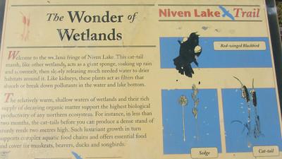 niven_lake_trail_08