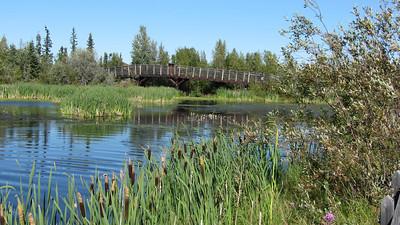 niven_lake_trail_13