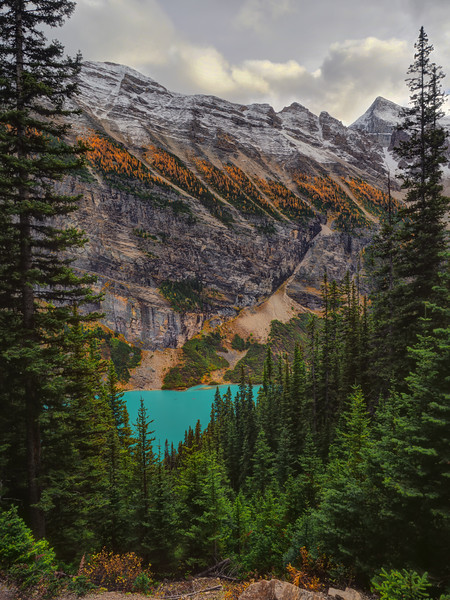 Lake Louise from the Teahouse Walk
