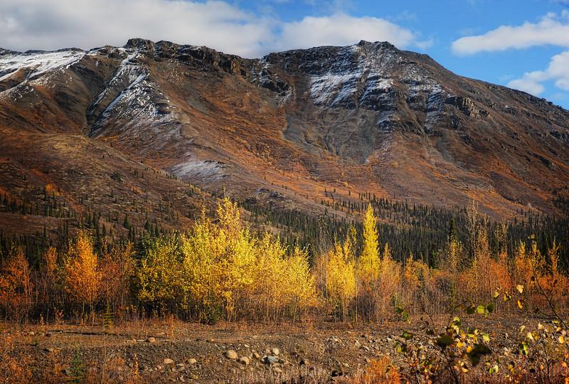 Yukon autumn