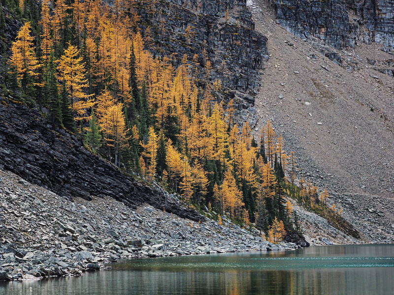 Autumn at Lake Agnes