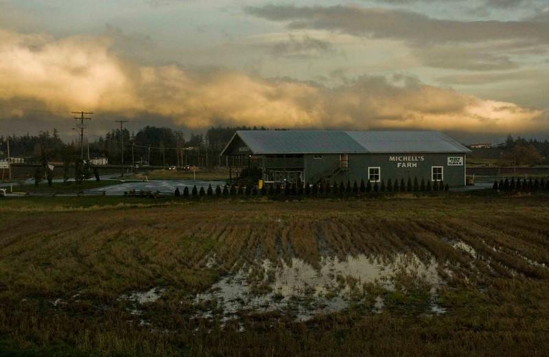 Farm, Saanich Peninsula