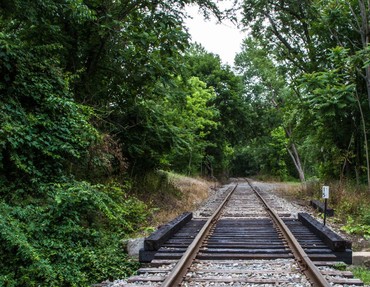 Tracks, Greenbank Mill, DE, 2007