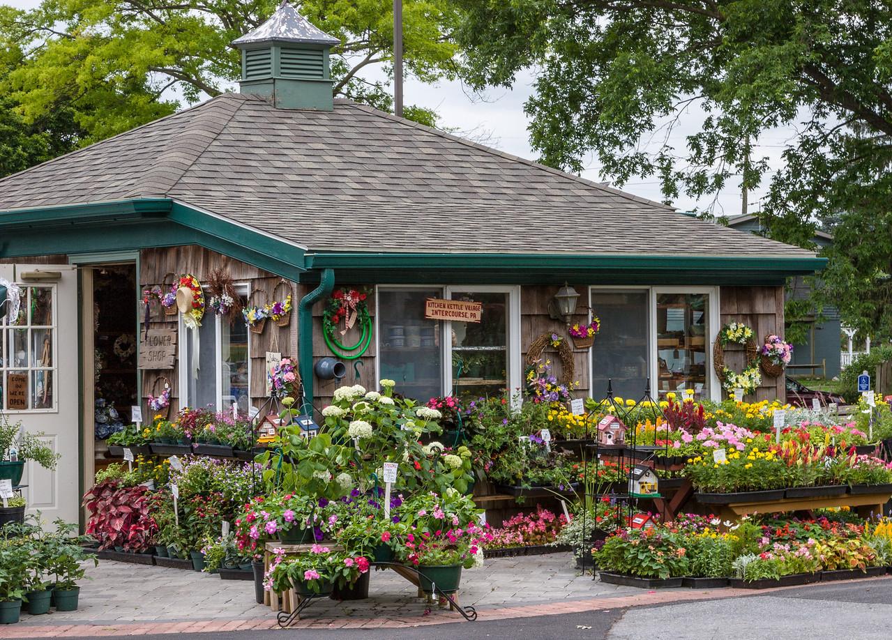 Flower Shop, Intercourse, PA, 2007