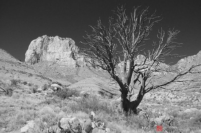 El Capitan, Guadalupe Mountains, Texas
