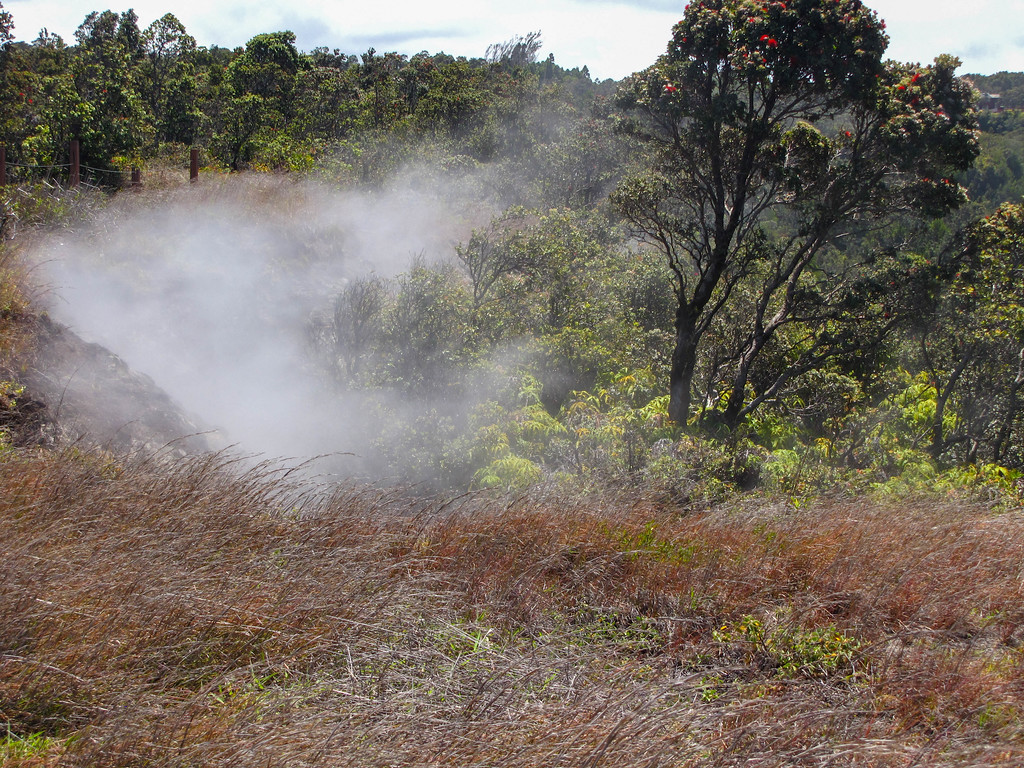 Steam Vents, Hawaii Volcanoes National Park.