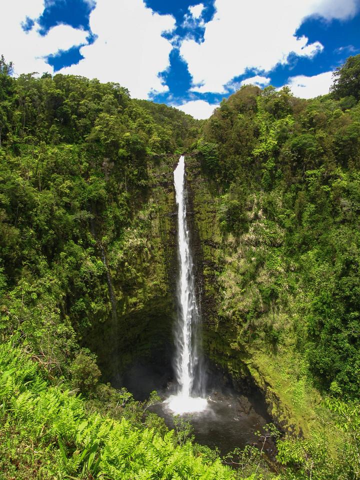 Akaka Falls State Park.