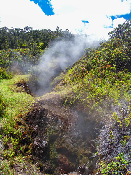 Steam Vents, Hawaii Volcanoes National Park.