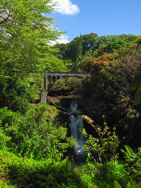 Four mile scenic drive, north of Hilo, on the Big Island's widward side.