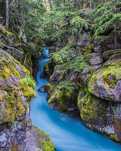 Avalanche Creek Blues