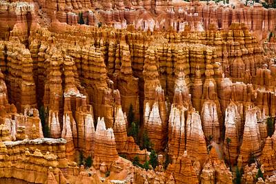Hoodoos- Bryce Canyon, UT